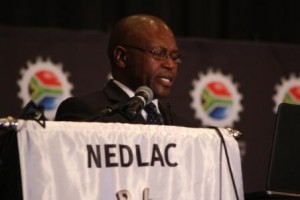 Executive Director Madoda Vilakazi presented the overview of the Council's performance